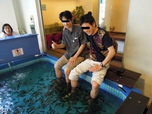 Dr.fish22